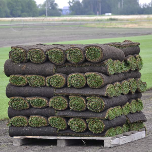Lawn - Sod - Delivery - Grass - Keon Garden Centre - Moose Jaw