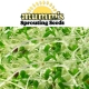 Mumms Sprout Seeds - Keon Garden Centre - Moose Jaw
